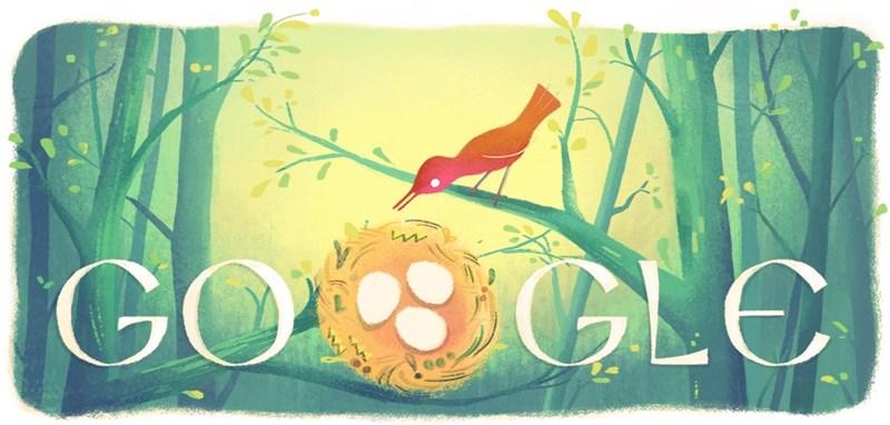 همه تخم مرغ ها در سبد گووگل