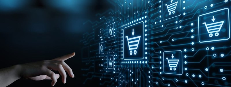 فروشگاه اینترنتی کالا چیست؟ معرفی بیزینس های کارآمد در فروشگاه اینترنتی؟